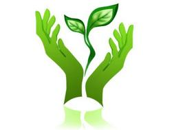 экология, эколог