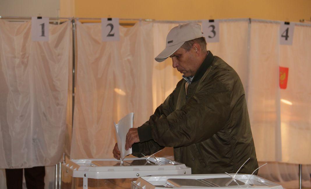 выборы 2016-3