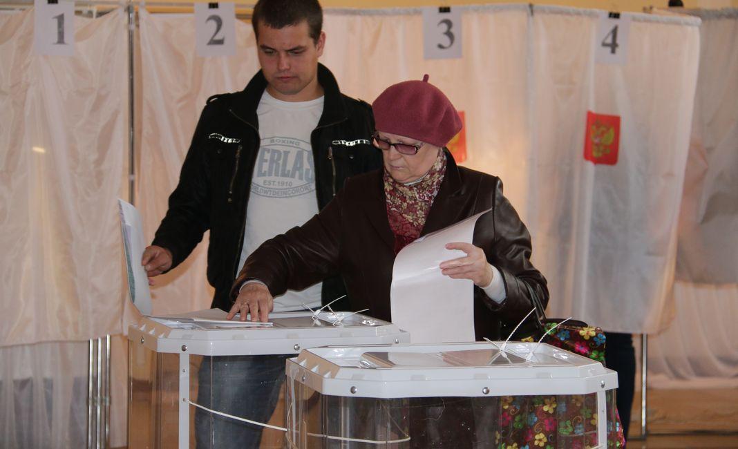 выборы 2016-6