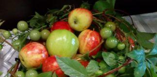 Дары осени, яблоки